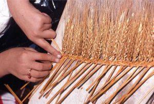museo del covo campocavallo - trecce di grano